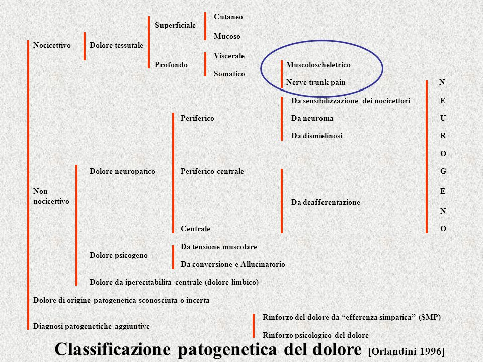 Classificazione patogenetica del dolore [Orlandini 1996]